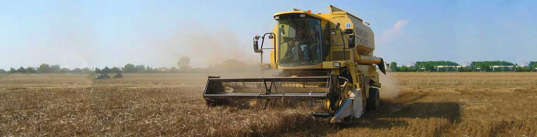 Soystorm cabezal por el corte y recolección de soja y otros cereales por todo tipos de cosechadoras (John Deere, Claas, Case, New Holland).