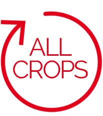 all-crops