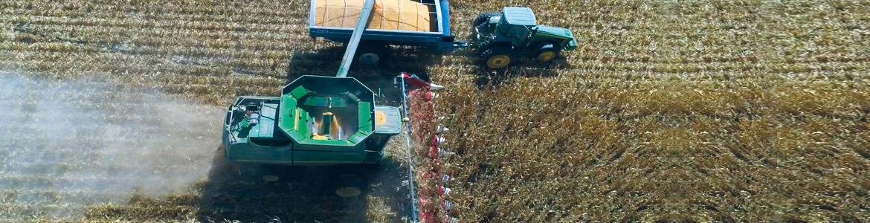 Nardi harvesting barra mais